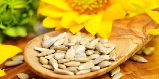 Sonnenblumenkerne gegen Wadenkrämpfe