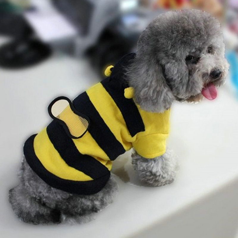 small bumblebee dog cat puppy halloween costume clothes pet apparel bumble bee dress up pet coat hoodie pet supplies by