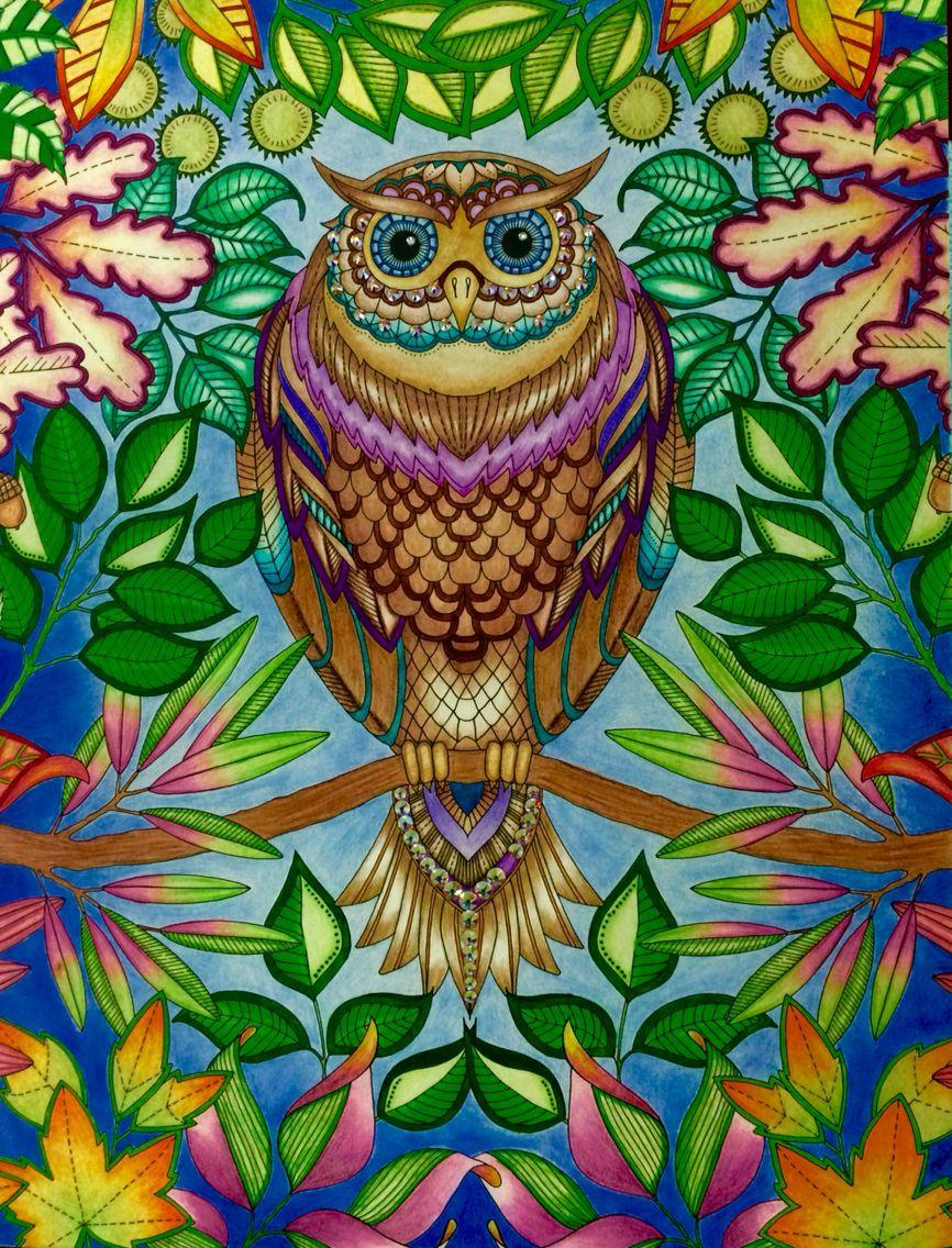 Verney Lim 28 11 2016 Johanna Basford Colouring Gallery Johanna Basford Secret Garden Johanna Basford Coloring Basford Coloring