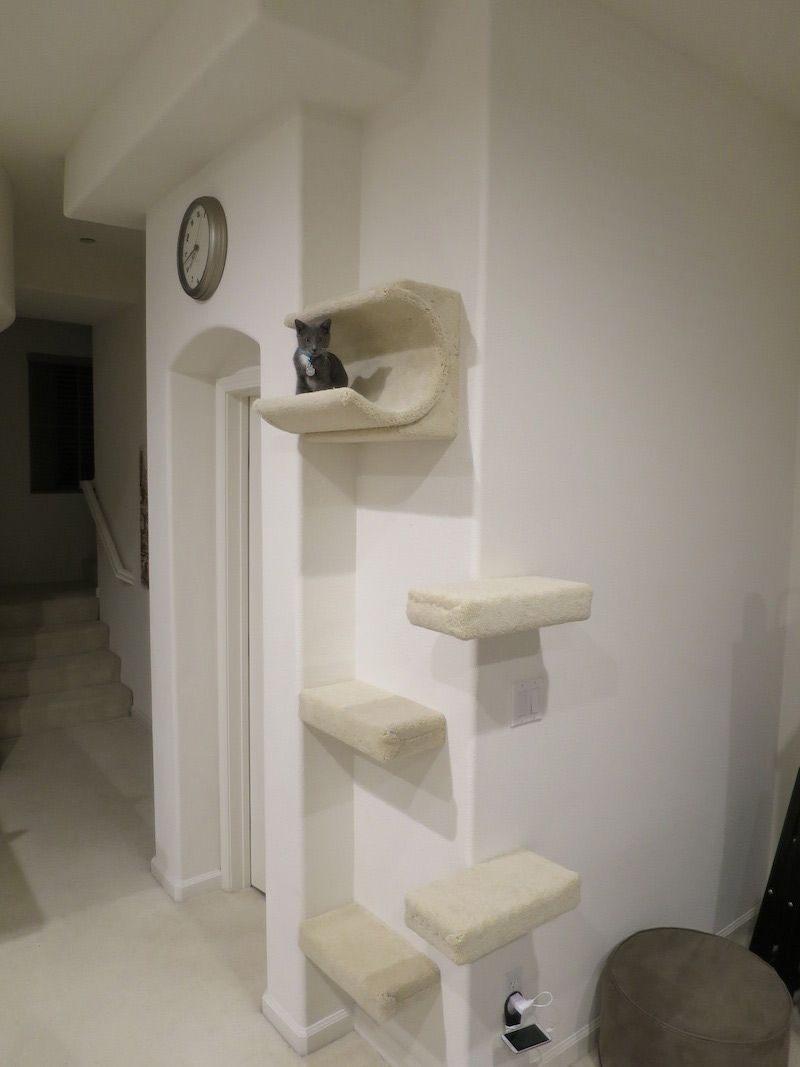 Modern Hallway Room Ideas With Beige Fabric Steps Cat Wall Shelves, And  White Railing Stair Design.