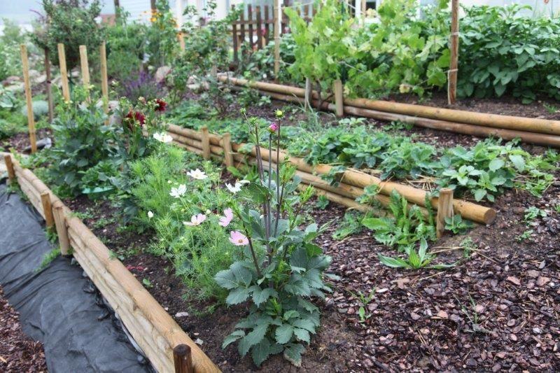 A Comprehensive Overview On Home Decoration In 2020 Gartengestaltung Ideen Garten Hochbeet Beet Anlegen
