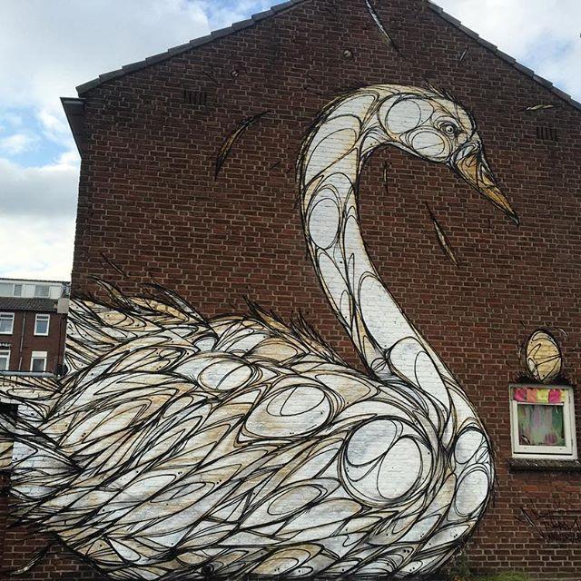 Nr 3 for @blindwallsgallery #dzia #streetart #mural #lineart #swan #dziakrank…