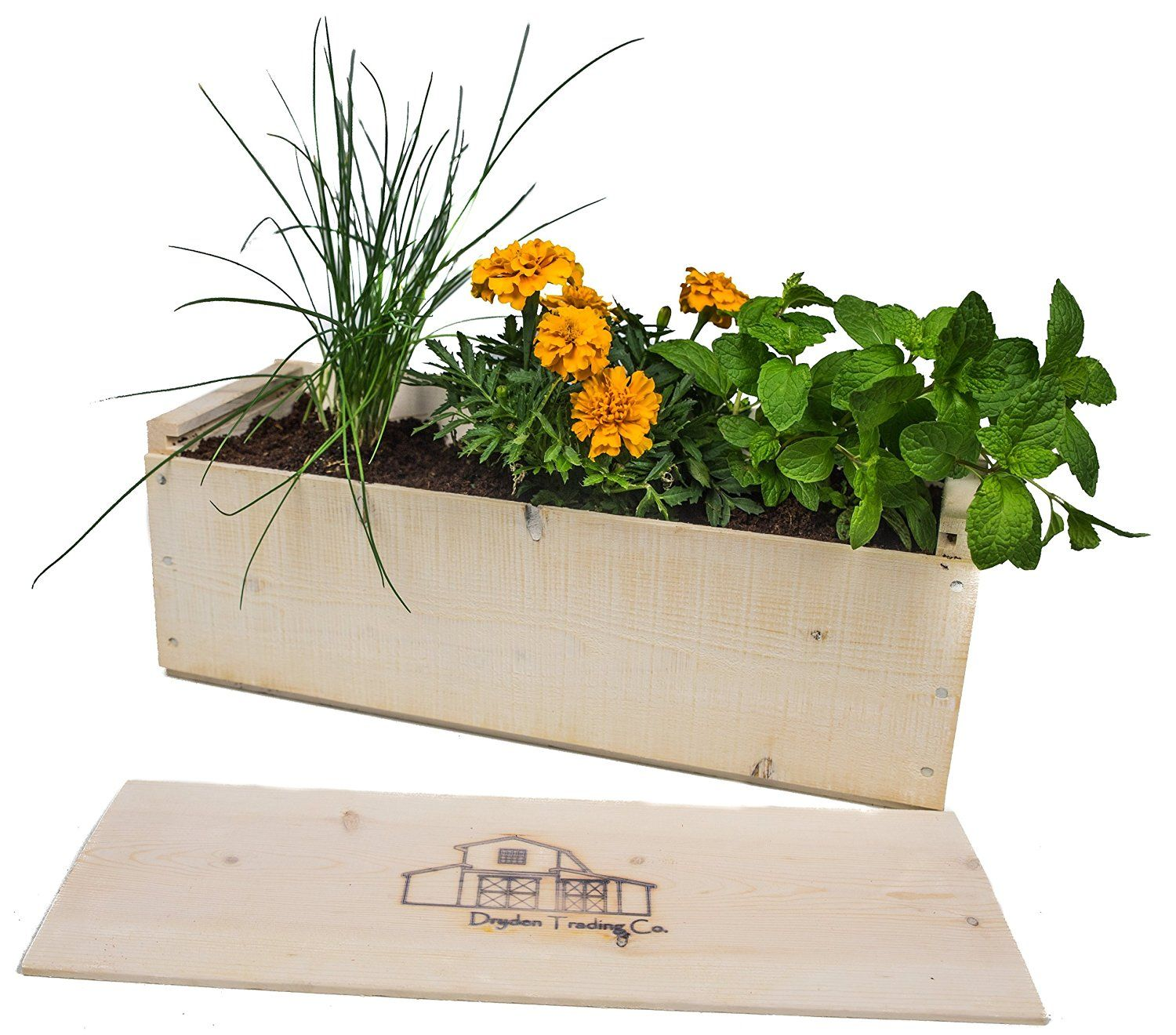 amazon : indoor herb garden planter box kit with basil
