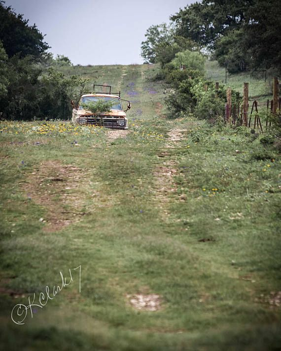 Wildflower Ford Fine Art Photography Pickup Truck Texas Backroads