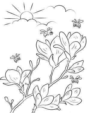 Ausmalbild Fruhling Bluten Und Bienen Ausmalbilder Fruhling Ausmalbilder Blumenmalvorlagen