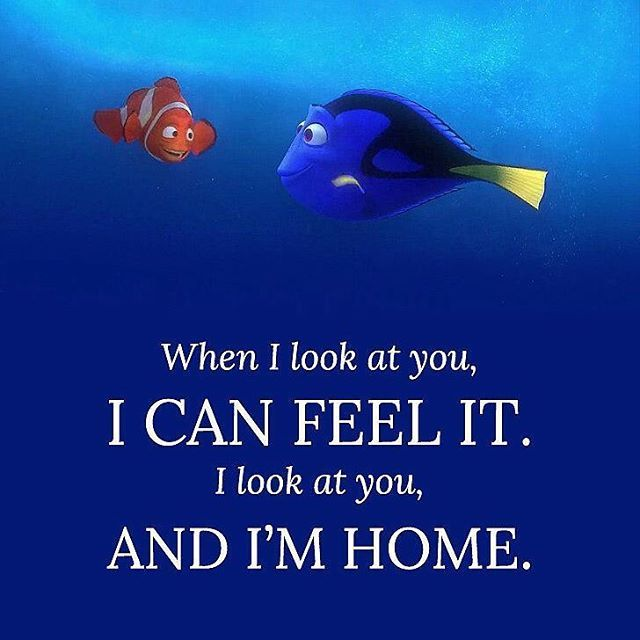 Dory Quotes Findingdory #findingnemo #dory #marlin #feelit #home  Tv Shows