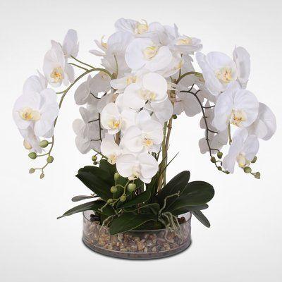 Red Barrel Studio Phalaenopsis Orchid And Vanilla Grass Bush