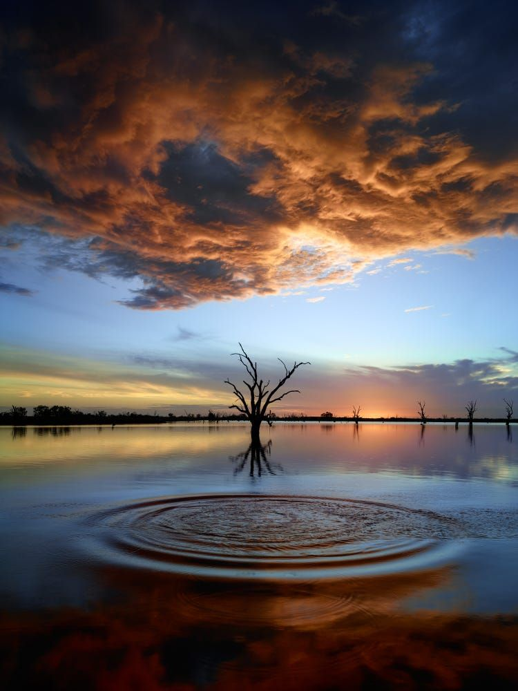 Luna Ripples By Guy Havell Trees Landscape Lake Sunset Color Water Nature Sun Clouds Cloudsca Landscape Photography Beautiful Landscapes Natural Scenery