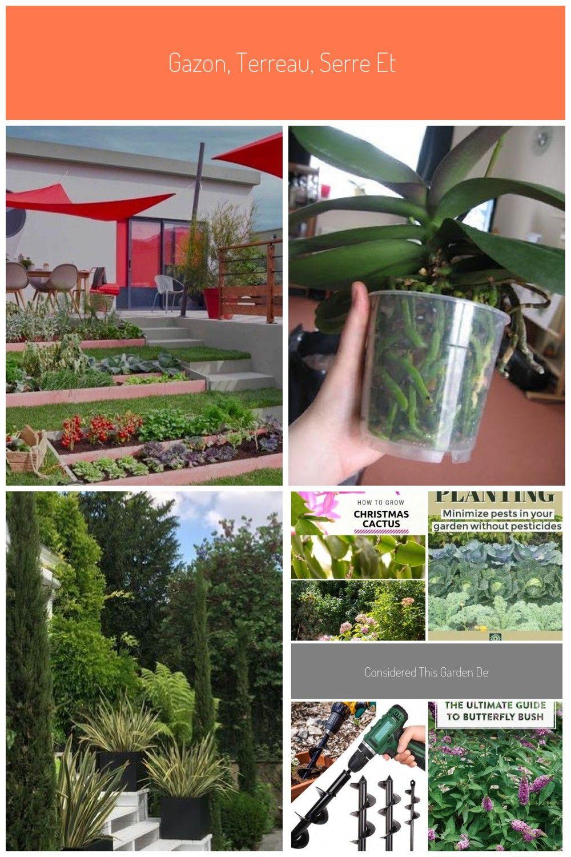 Gazon Terreau Serre Et Entretien Du Jardin Leroy Merlin Entretien Entretiendujardin Gazon Jardin Leroy En 2020 Entretien Du Jardin Entretien Paysager Gazon