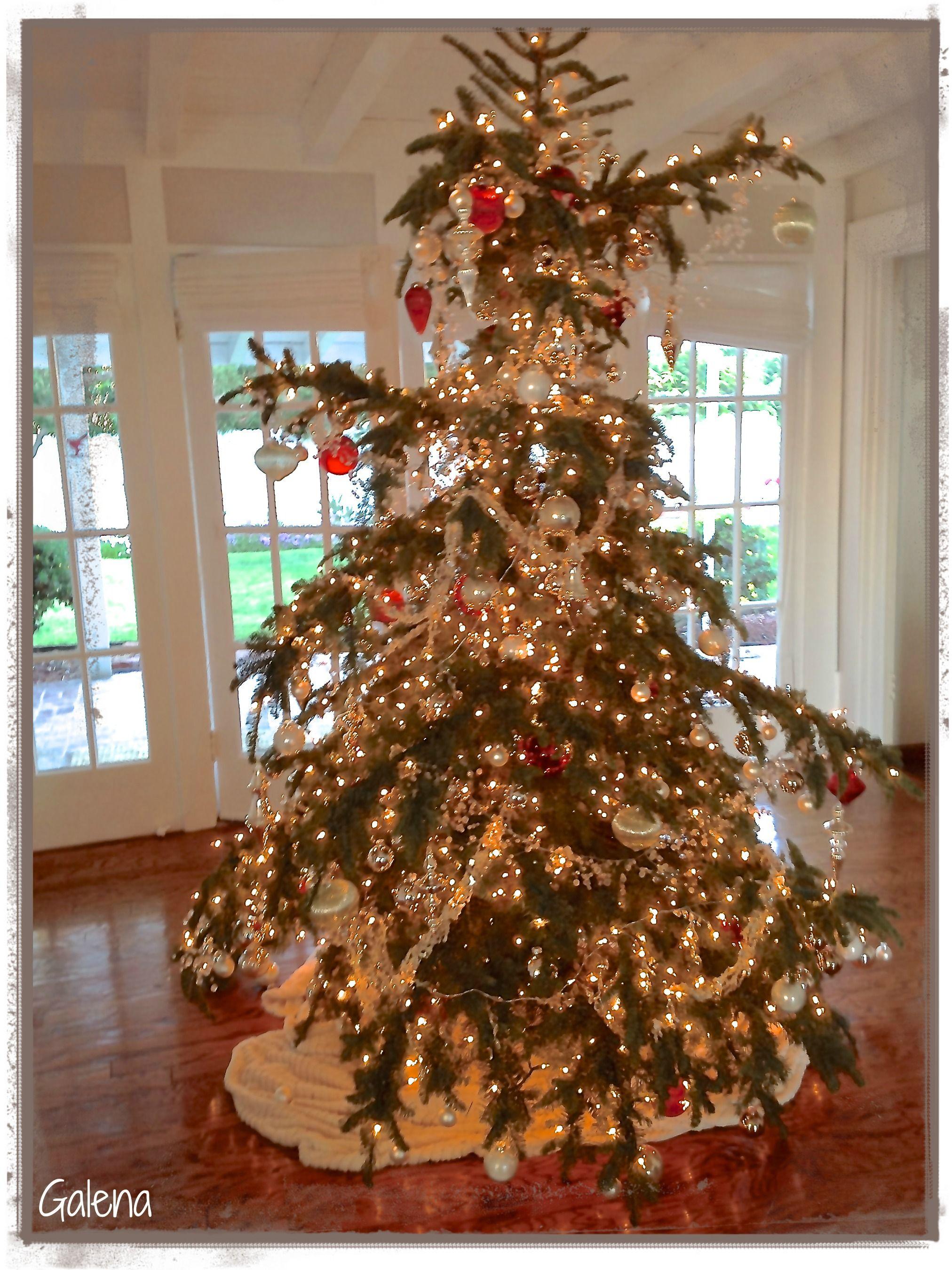 El rbol de navidad elegante sencillo y original