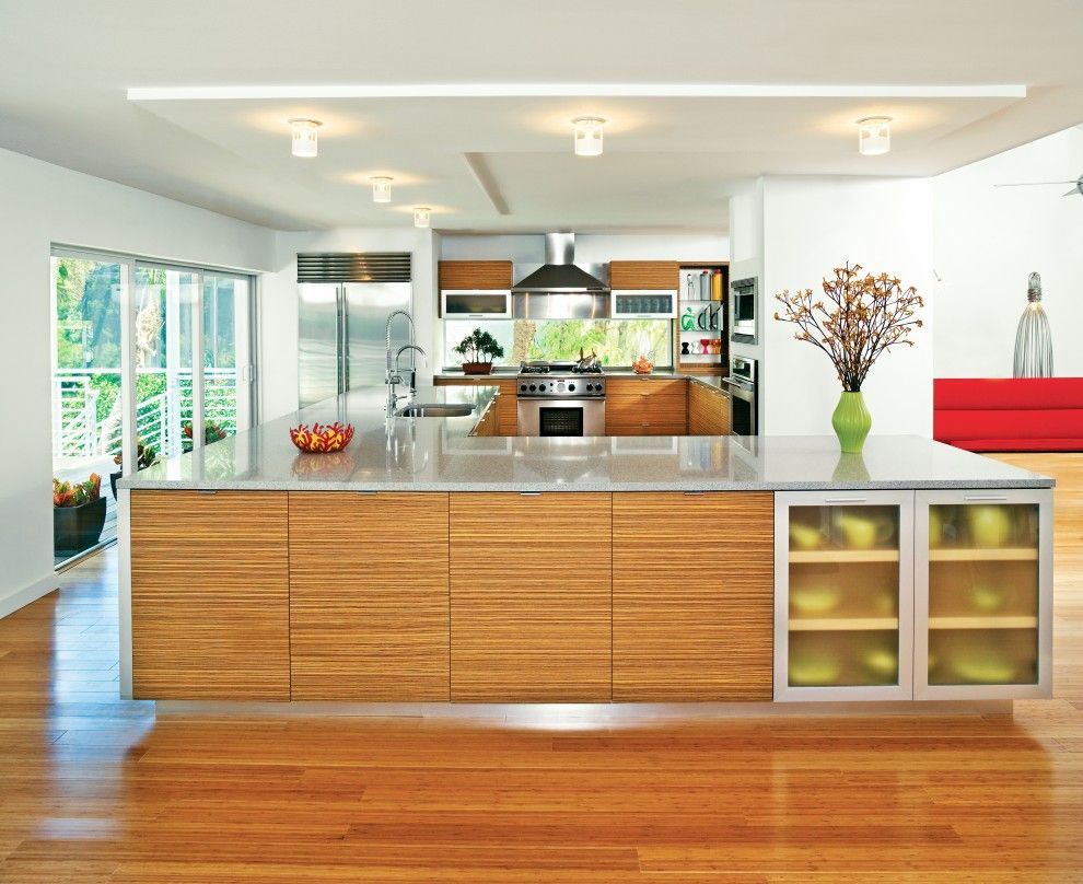 Zebra Wood Cabinets Kitchen Modern with Bamboo Flooring Ceiling ...