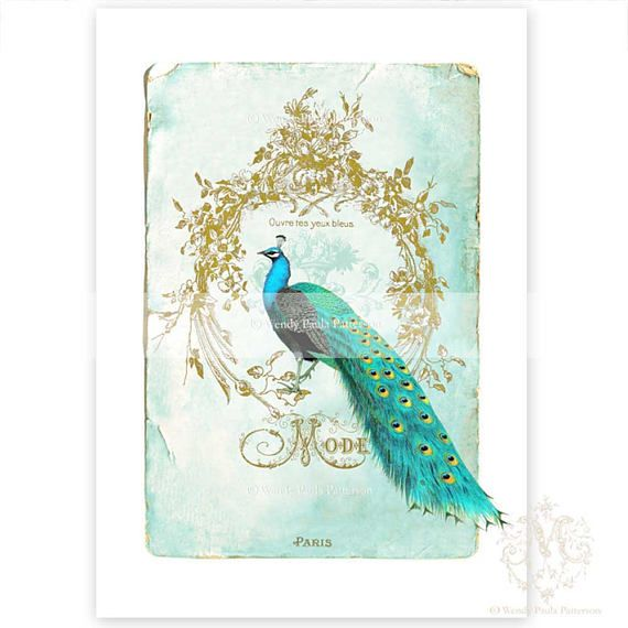 Peacock Print Vintage Illustration French Art