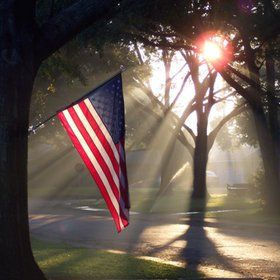 Morning Glory. Love this pic. I can just feel the early morning sun on the 4th of July.