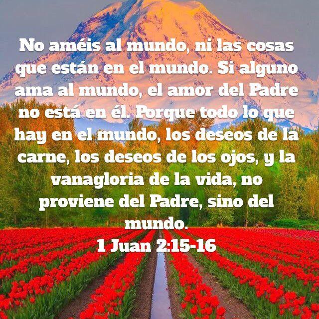 1 Juan 2 15 16 Biblia Reina Valera 1960 Rvr1960 Palabra De Vida Biblia Reina Valera 1960 Te Amo