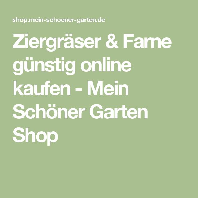 Shop Mein Schöner Garten ziergräser farne günstig kaufen mein schöner garten shop