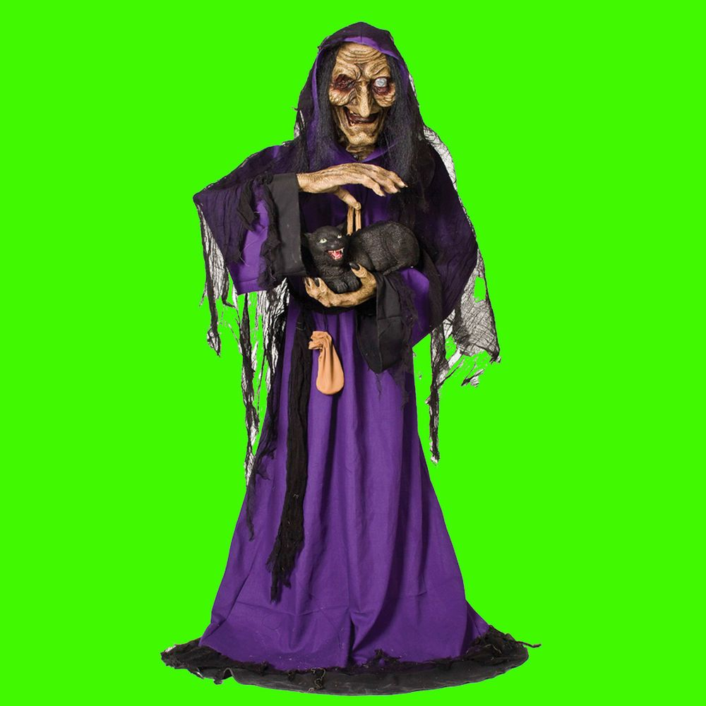 Life Size Animated-SCARY WITCH-BLACK CAT-Haunted House