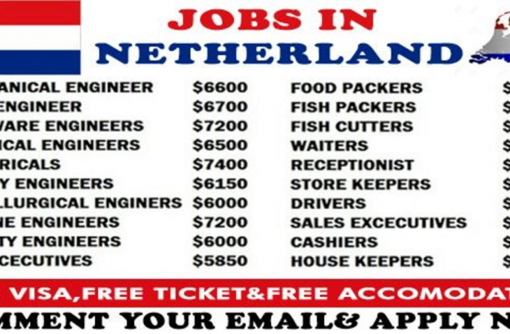 Companies In Netherlands Are Hiring Apply Now Yes I Am Interested Jobs In Netherlands Job How To Apply Hiring