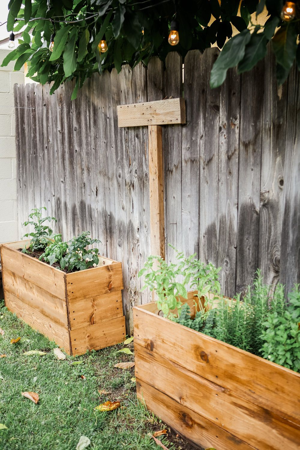 DIY Wooden Herb Garden Planters for less than $100 | Herb ...