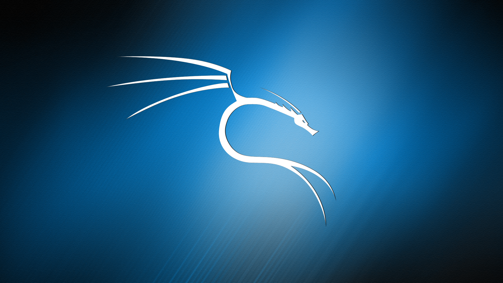 Kali Linux R Wallpapers Blue Background Wallpapers Blue Backgrounds Background