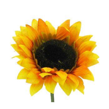 Natural Yellow Sunflower Stem | Hobby Lobby