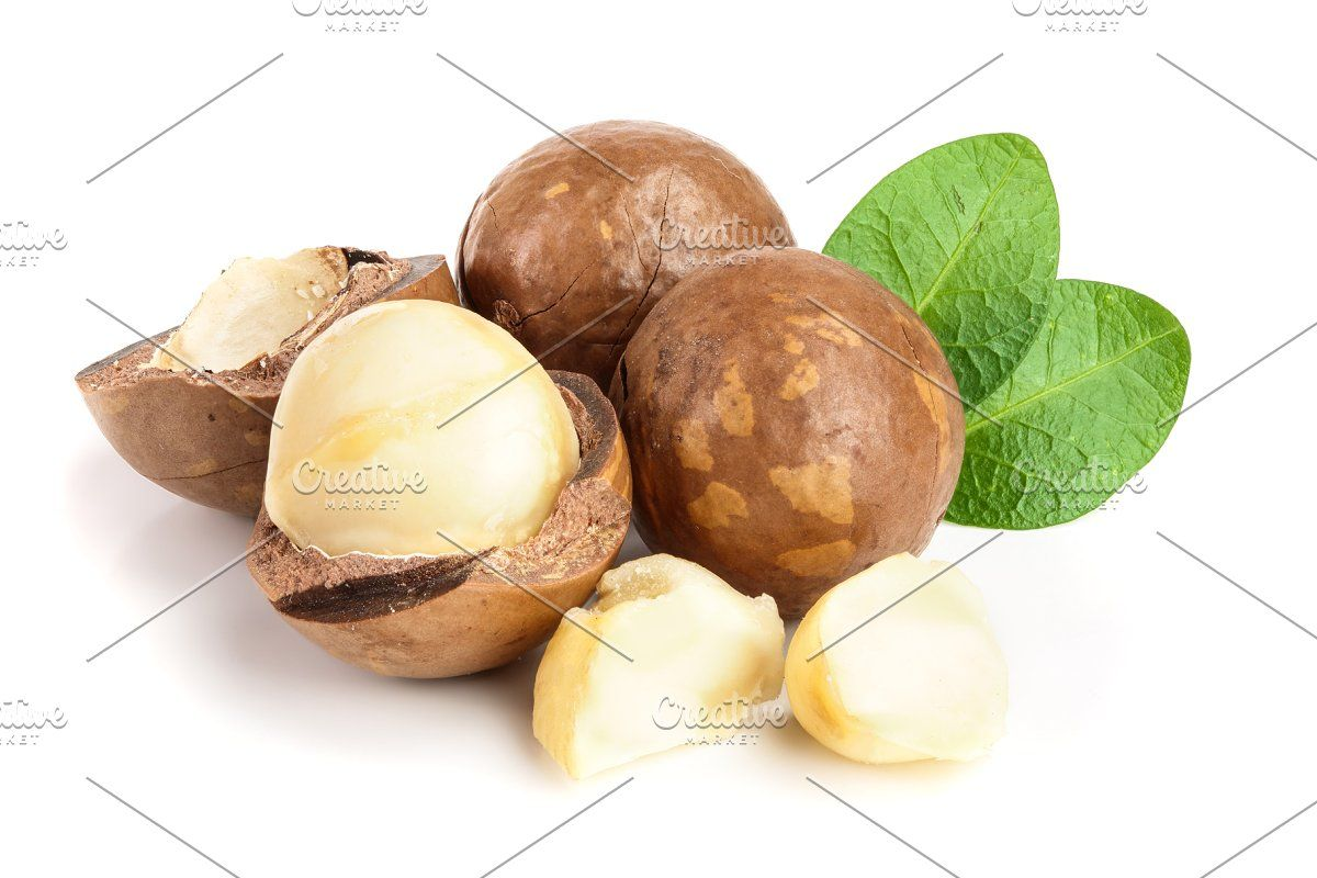 a0265bd83b303d1d0841af7c14e876aa - How To Get Macadamia Nuts Out Of Their Shells