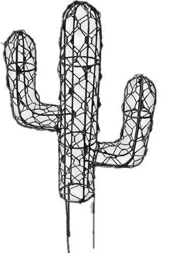 Pin by Elizabeth Gilbert on Gardening | Pinterest | Topiary, Cacti ...