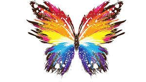 Image result for colourful butterfly