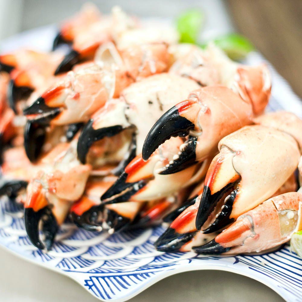 8 Things You Probably Didn't Know About Stone Crabs