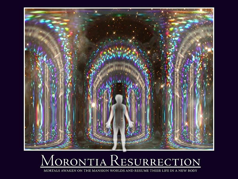 Morontia definition