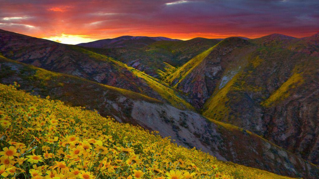Fire Skies, Carizzo Plain N.M., California
