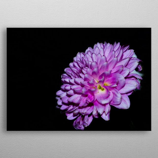 Check out my new photos on displate! #flowerphotos #floraldecor #macrophotography