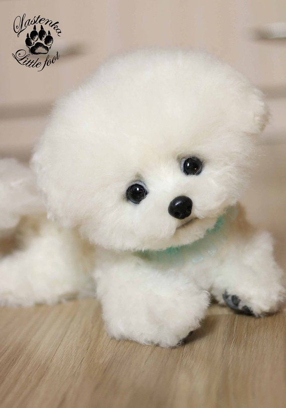 4fc21a24a7c5 Puppy Bichon frise Dandelion stuffed dog Artist toy OOAK teddy dog Portrait  pet handmade collectible