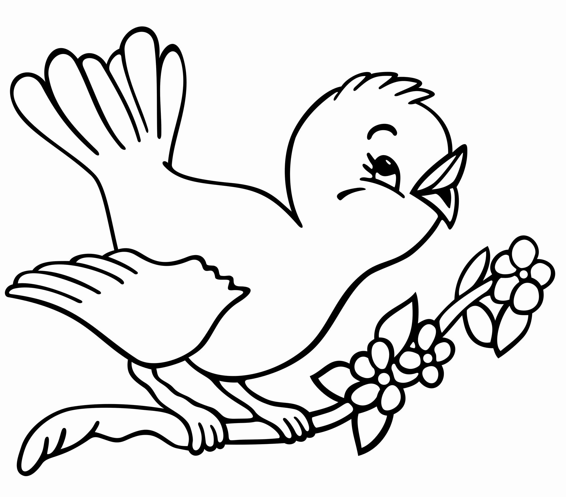 Spring Animal Coloring Pages In 2020 Spring Coloring Pages Bird