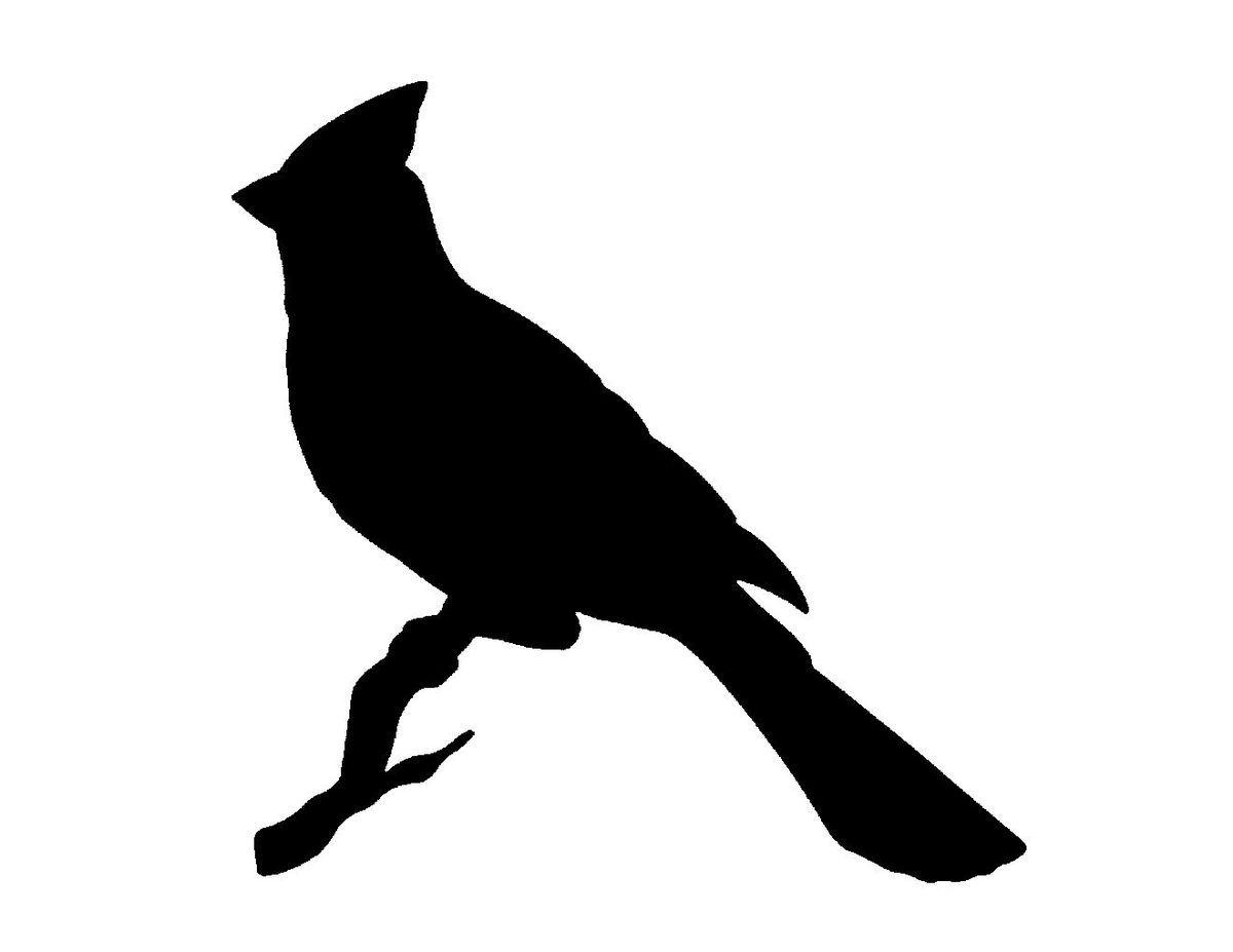 картинки с силуэтами птиц уверенностью можем