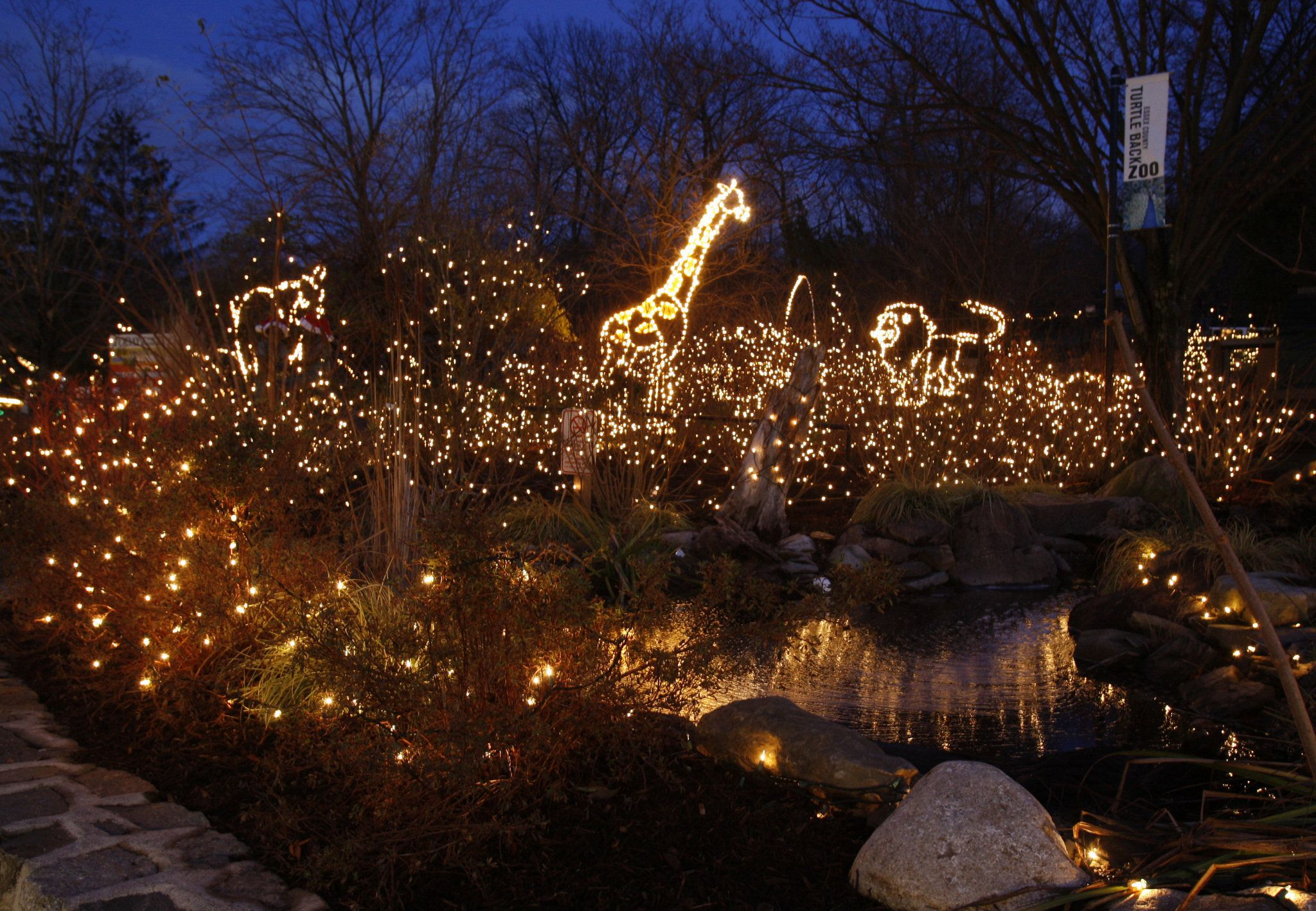 Turtle Back Zoo Christmas Light Show West Orange NJ | Things To Do ...
