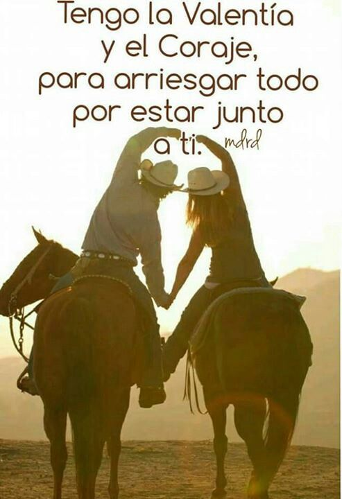 Frases Vaqueras Cute Horses Horse Photography Y Horse Pictures