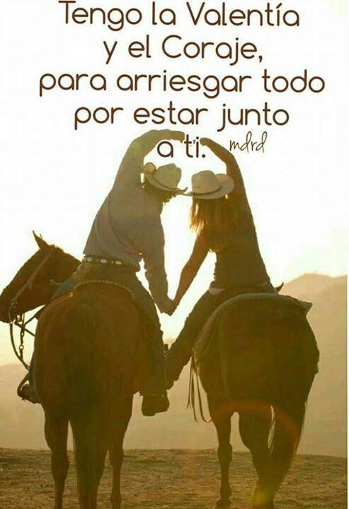 Frases Vaqueras Amor Caballos Caballos Enamorados Y Caballo