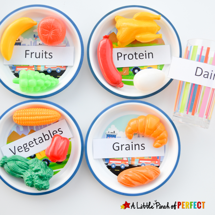 Science for Kids Learning about the 5 Food Groups