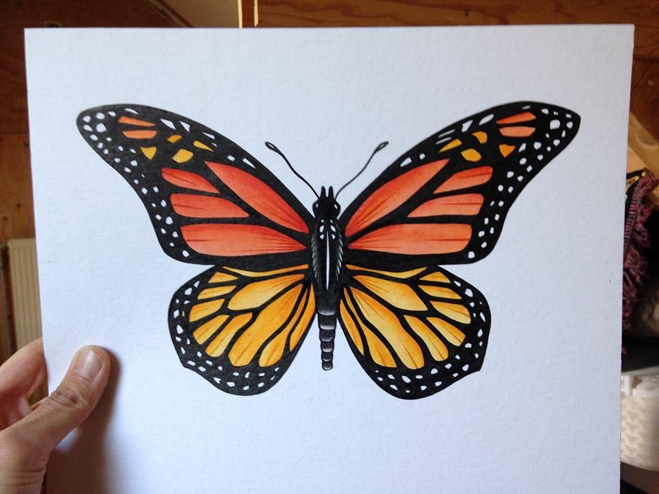 koningsvlinder butterfly