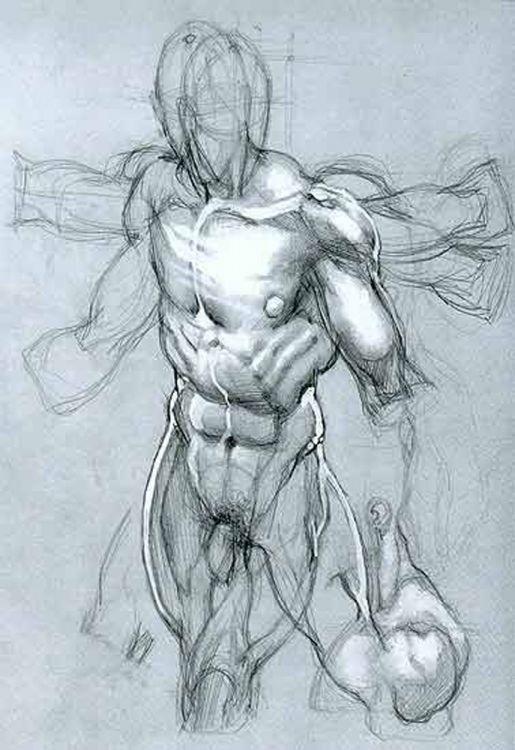 Pin von Chih Chien Lin auf Sketch Training | Pinterest | Medizin ...