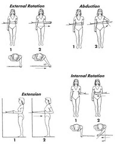 Exercise S Of The Week Shoulder Stability With The Resistance Band Rotator Cuff Exercises Shoulder Rehab