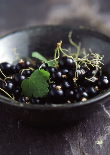 Black Currant Fruit Fruit And Veg Fruits And Veggies