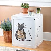 Take a look at the Feline Favorites event on #zulily today!