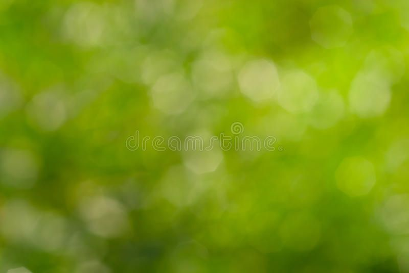 Abstract Green Nature Bokeh Background Green Natural Background Of Out Of Focus Aff Nature Bokeh Abs Bokeh Background Green Nature Natural Background