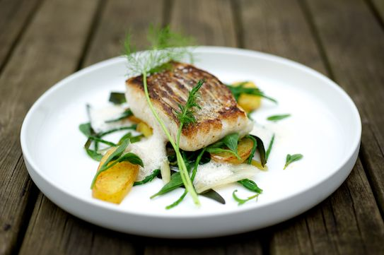 Pan Fried Hake With Fennel Confit And Dry Sherry Sauce 魚