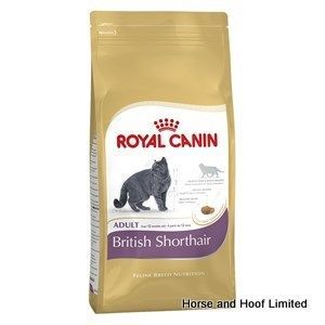 Royal Canin S Feline Health Nutrition Wet Formulas Are Designed Around A Cat S Nutritional Needs And Instinctive Canned Cat Food Kitten Food Cat Food