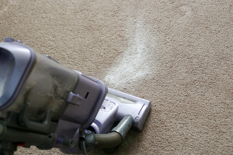 How To Use Baking Soda To Kill Fleas On Carpet Fleas