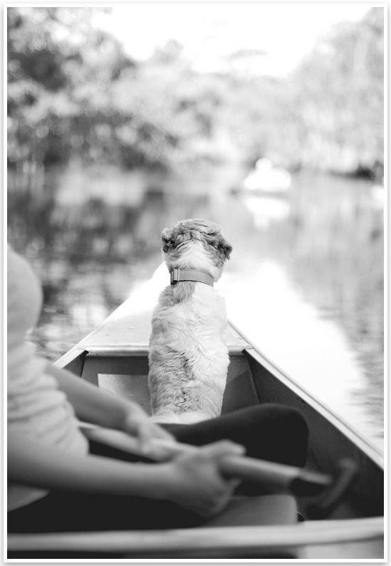 Puppy in Canoe!  Coco Birthday Weekend | Pretty Fluffy