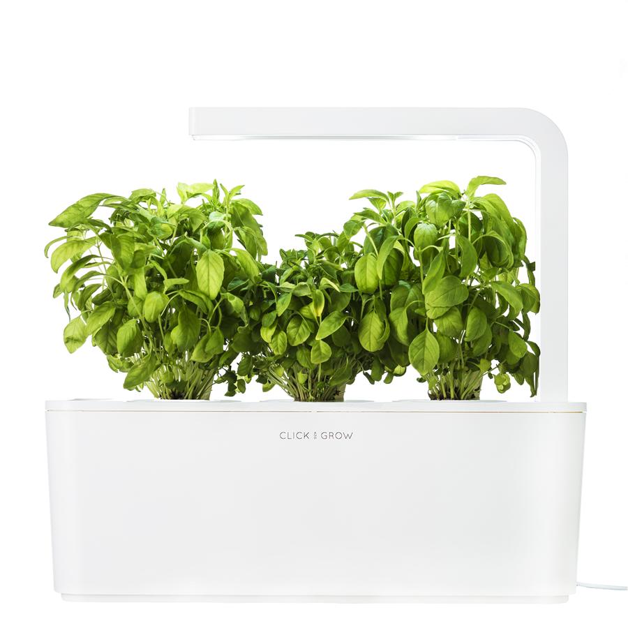 The Smart Garden 3 Herb Garden Kit Herbs Indoors Smart 400 x 300