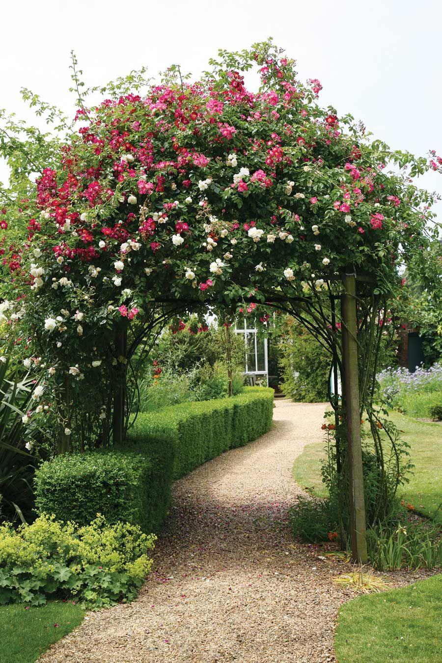 Gorgeous rose arch low box hedge plants for Romantische garten gestalten